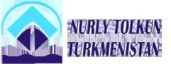 logo_nurlytolkun